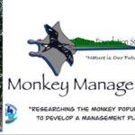 monkeymanagement04052021